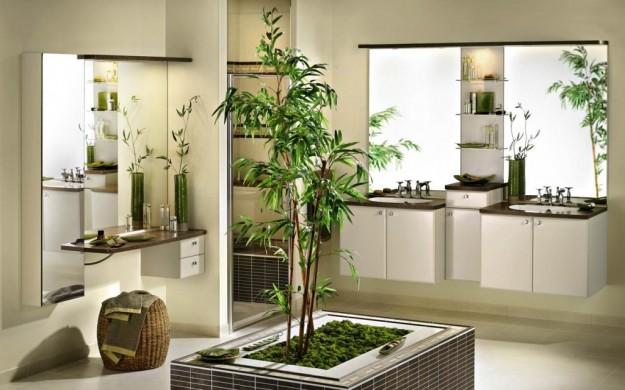 piante ornamentali per il bagno