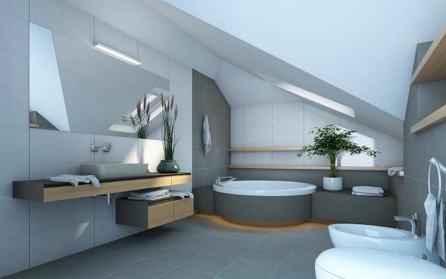 posizione ideale per le piante da bagno