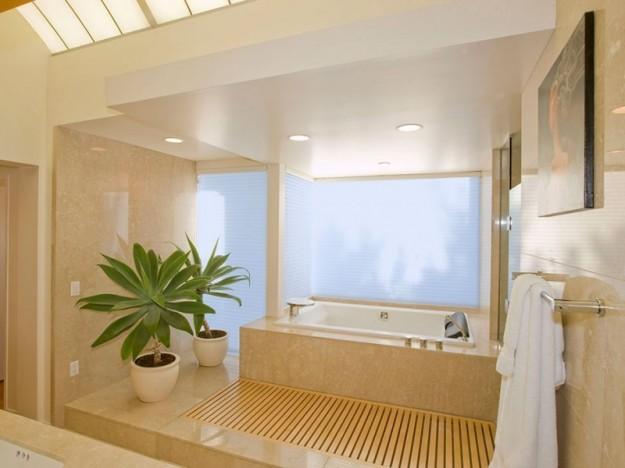 Tipologia di piante per la sala da bagno